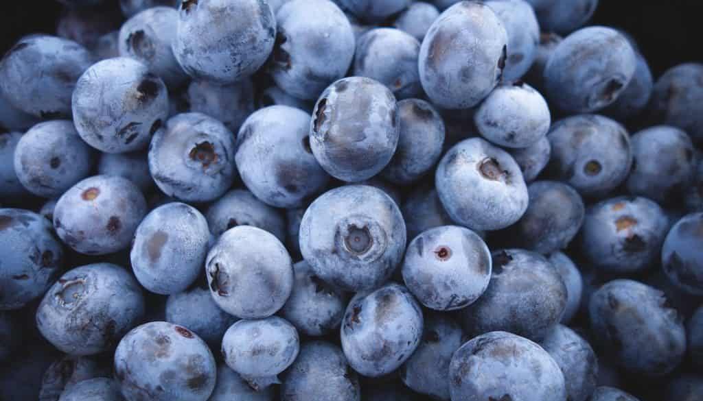blueberries-690072_1920 - Copy
